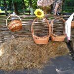 сено и плетень